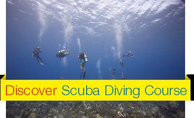 Discover-Scuba-Diving-Course