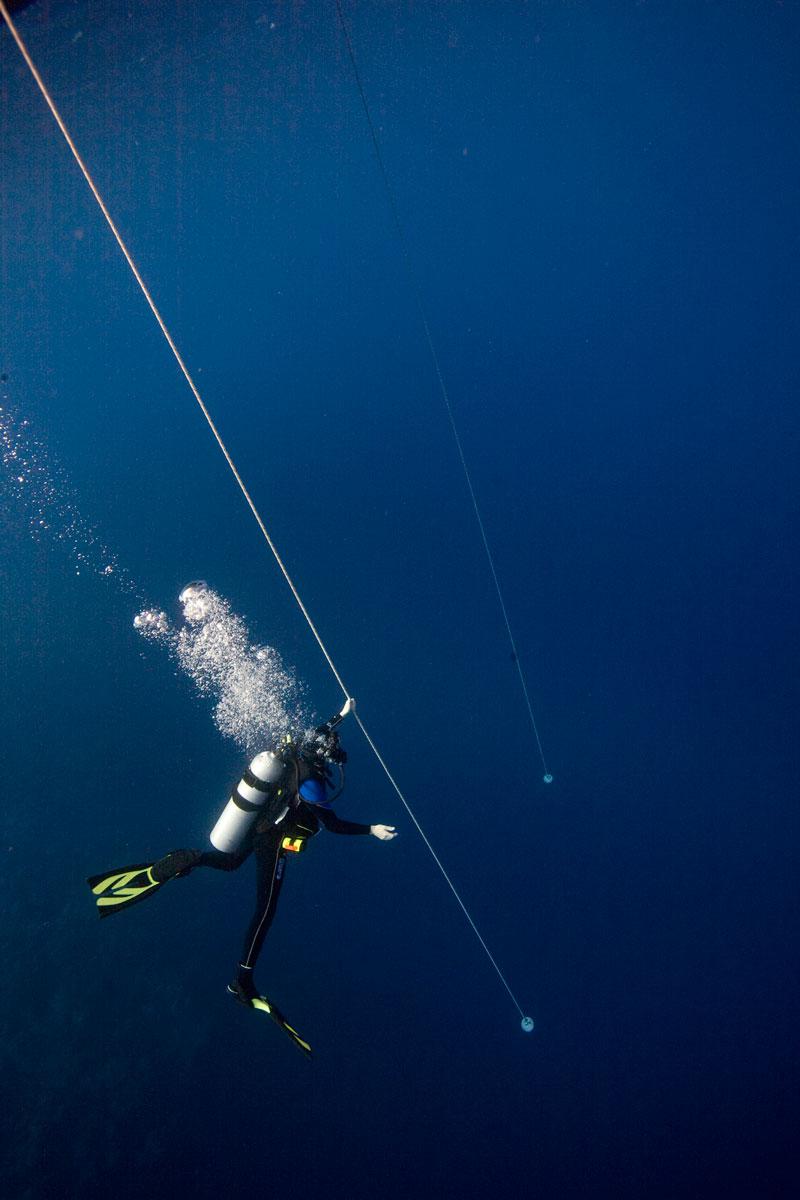 Deep Diver - image deep-diver on https://oceanoscuba.com.co