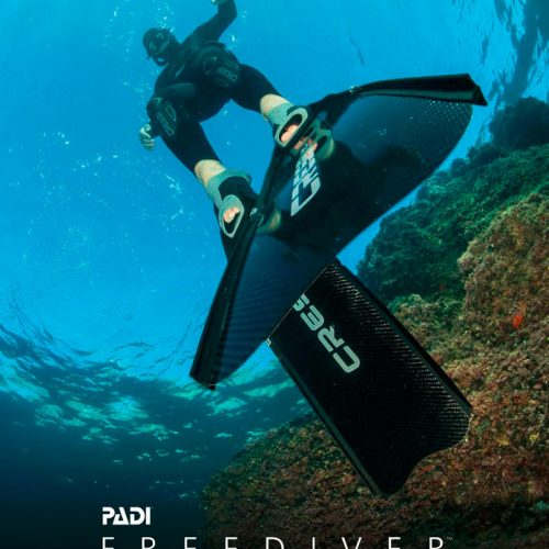 Tec 40 - image free-diving1-500x500 on https://oceanoscuba.com.co