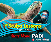 Meet Oceano Scuba - image take-scuba-lessons-online on https://oceanoscuba.com.co